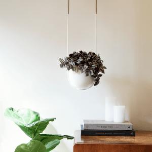 Bolo wand- en plafondhangpot bloempot wit van Umbra
